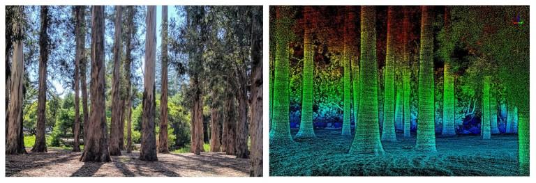 森林ライダー01